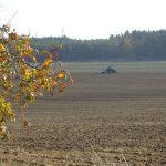 Bodenbearbeitung im Herbst