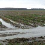 Wasser auf den Feldern