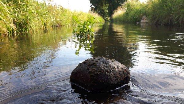 Der Wasserstand sinkt